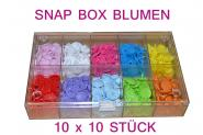 Blumenbox 100 Stück
