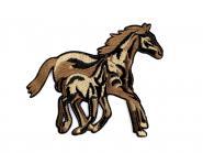 Applikation Pferde